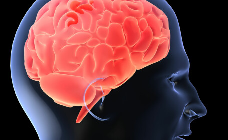Studiu: Stangacii au sanse mult mai mari sa sufere de boli mintale, printre care si schizofrenia