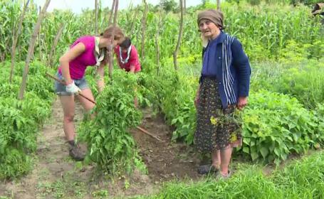 45 de adolescenti belgieni au venit in Alba sa descopere viata la tara si sa ajute batranii la treburi gospodaresti: E grozav