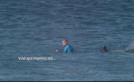 rechin surfer