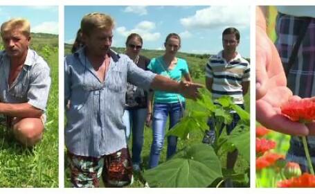 Afaceri de succes in agricultura, cu investitii minime. Cum a castigat un roman 30.000 de euro dintr-o singura recolta