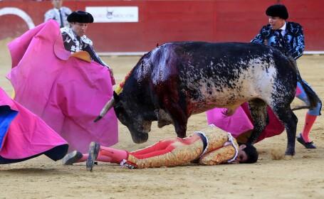 matador ucis in Spania - Agerpres
