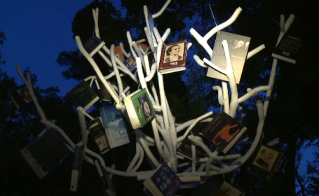Copacul din parcul Cismigiu in care \