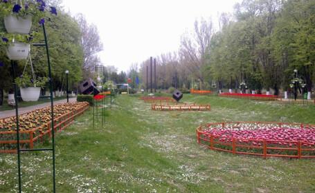 """Cel mai mare parc din Ploiesti, """"Constantin Stere"""""""