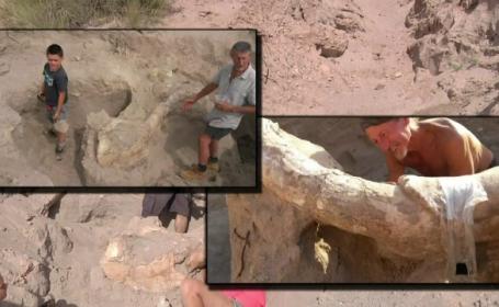 Descoperire New Mexico