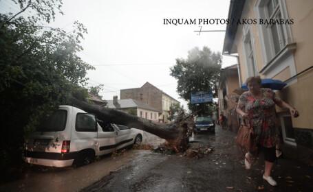 furtuna Odorheiu Secuiesc