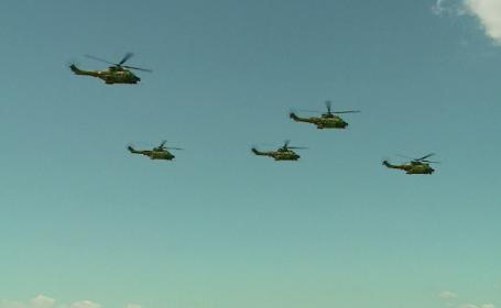 elicoptere turda