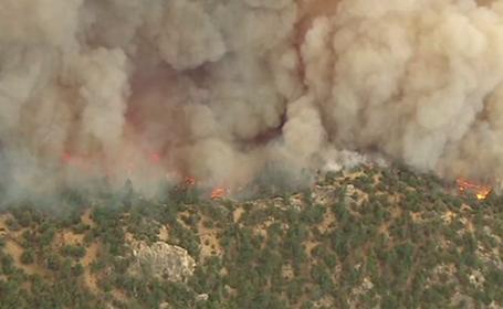 Incendii devastatoare de vegetație în SUA, provocate de o mână criminală. Un suspect, reținut