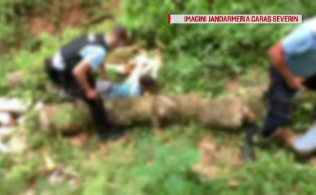 Dosare penale din cauza unor lemne. Cum au fost surprinși trei bărbați din Reșița