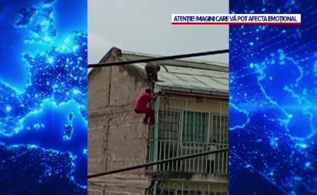 Caz șocant. Un bărbat atacat de un babuin a căzut de pe o clădire cu patru etaje