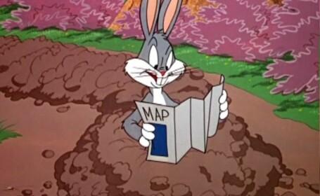 Faimosul personaj de desene animate Bugs Bunny aniversează 80 de ani de la apariție