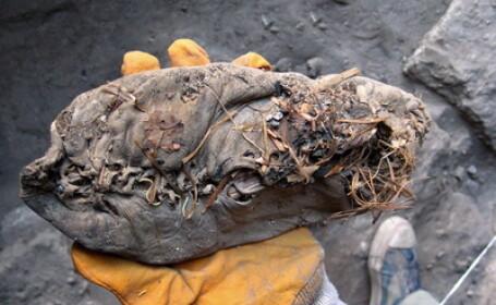 Asta da pantof - a tinut 5.500 de ani! Cel mai vechi mocasin din lume