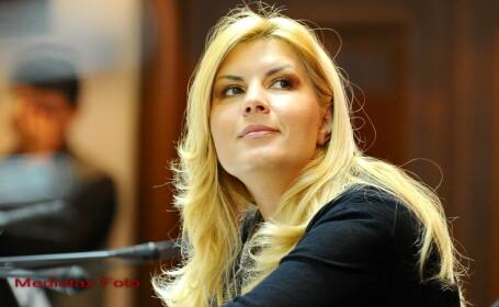 Elena Udrea: Majoritatea sustinatorilor mei au propus plecarea din PDL, eu am sustinut ramanerea