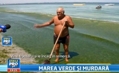 20.000 de turisti vor face baie printre alge la Mamaia. Se intoarce \