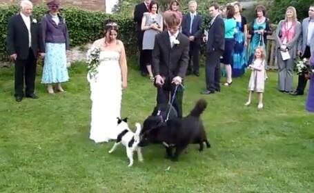 Nunta distrusa de nevoi fiziologice. Milioane de oameni au ras de scena care urmeaza acestei poze