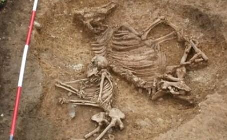 Femeia ingropata langa o vaca. Un mormant vechi de 1.500 de ani, o descoperire UNICA in Europa