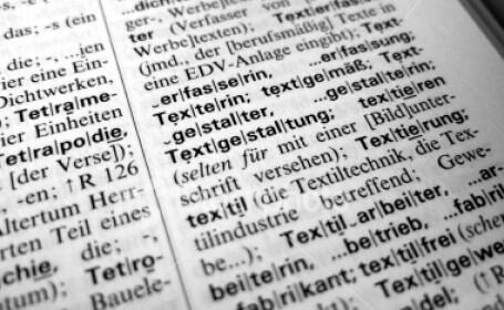 dictionar german