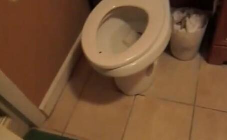 Un barbat din Israel a trait socul vietii in timp ce se afla in baie. De ce a fost atacat
