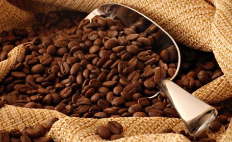 Milionari din cafea. Cum a luat nastere unul dintre cele mai cunoscute branduri din domeniu