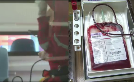 Cercetatorii din Cluj au inventat sangele artificial. Solutia contine apa, saruri si o proteina