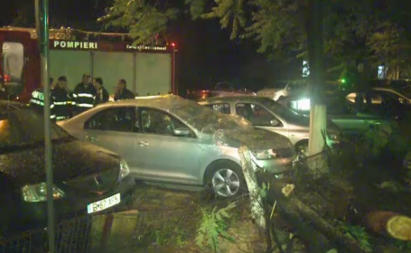 Noapte cu ghinion pentru cativa soferi din Bucuresti. Trei masini au fost avariate de caderea unor copaci