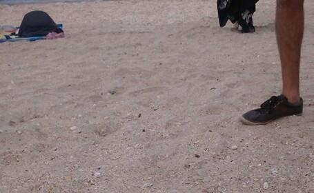 Turistii au sesizat primele probleme pe litoral. Descoperirea alarmanta facuta pe plaja din Mamaia