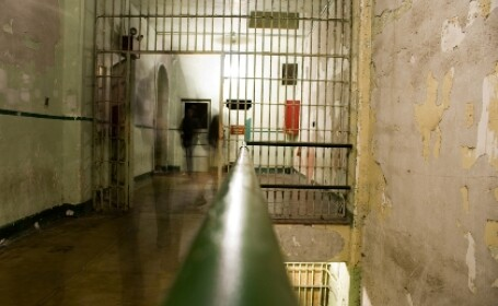 stafie Alcatraz