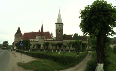 case Ioana Craciunescu