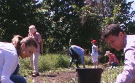 Mai tare ca Farmville: gradina comunitara, ideea care ii transforma pe corporatistii din Romania in fermieri