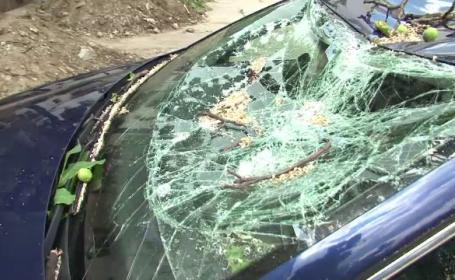 Doua autoturisme distruse de un copac rupt de vant, la Bacau. \