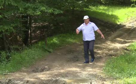Primarul care a irosit 10 MILIOANE de lei ca sa asfalteze un drum ce se opreste in padure: \