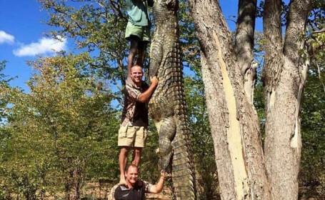 Poza care a bulversat internetul: cat de mare este, de fapt, acest crocodil. Care este misterul legat de imagine