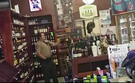 Un paun a provocat haos intr-un magazin de bauturi alcoolice. Pana a fost prins, a spart mai multe sticle