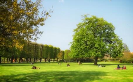 natura, parc