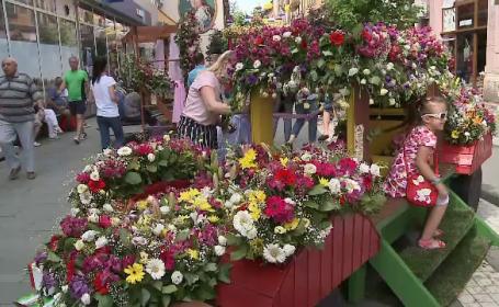 Zeci de mii de flori, expuse pe străzile din Arad