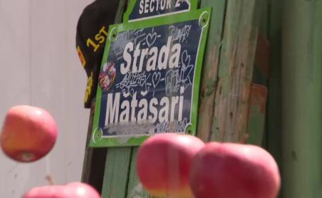 case matasari