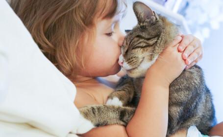 O pisică, lângă fiecare copil. Motivul pentru care medicul ne dă acest sfat