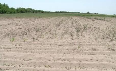 """O zonă din țară se transformă în deșert. """"Peste 2 săptămâni, va fi numai și numai nisip"""""""