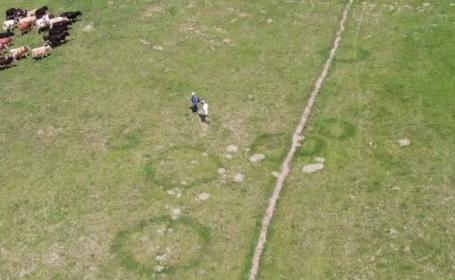 Cercuri misterioase în iarbă, descoperite în Neamț. Localnicii susțin că au văzut OZN-uri