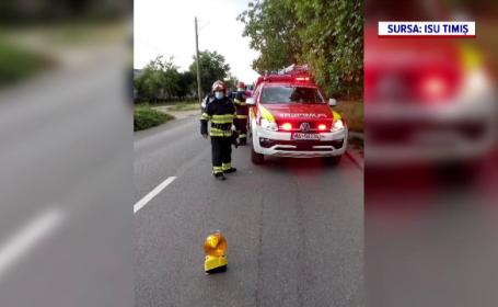 Momente de groază la Timișoara. Un bărbat s-a întins pe șine înainte să treacă trenul