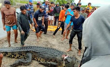 Scene îngrozitoare în Indonezia. O femeie a fost sfâșiată de crocodil. Ce s-a găsit în burta acestuia