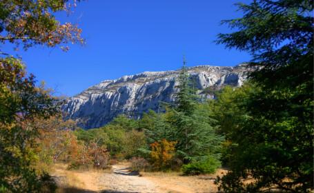 munti franta Sainte-Baume