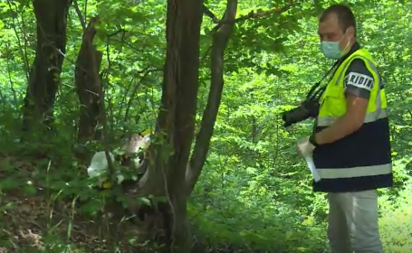 Descoperire șocantă într-o pădure din Dâmbovița. Bărbat găsit mort cu capul pe o piatră