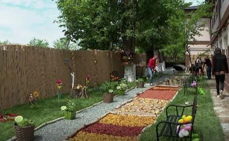 A fost inaugurată singura grădină senzorială dintr-o școală de stat din România. Poartă numele lui Adi Bărar