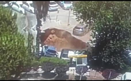 O groapă uriașă a apărut din senin și a înghițit trei mașini în apropierea unui spital din Ierusalim