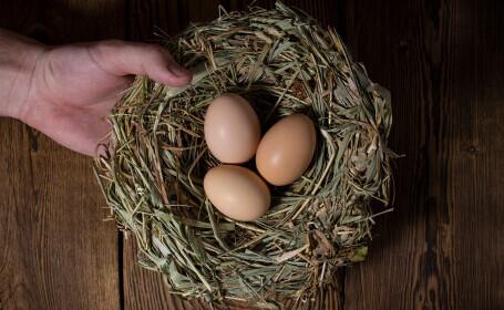 Un ou de găină vechi de 1.000 de ani, descoperit intact în Israel. Cum a fost posibil