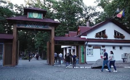 Noaptea Muzeelor. Grădina Zoologică din Târgu Mureș a primit vizitatori până la miezul nopții