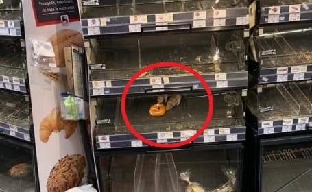 FOTO șocant într-un magazin din București: doi șobolani mănâncă un covrig, în vitrină. Reacția supermarketului