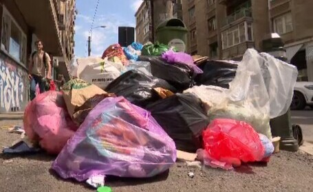 Războiul gunoaielor din sectorul 1 aduce ultimatumul Primăriei: rupe contractul cu Romprest, în 24 de ore