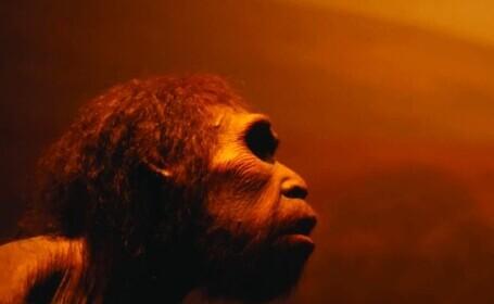 Descoperirea șocantă care ar putea schimba ceea ce știm despre istoria omenirii