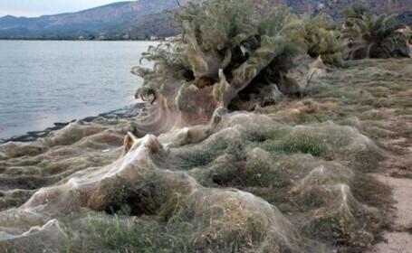 """Fenomenul terifiant de pe o plajă din Grecia. """"De ce au început să cucerească Pământul?"""""""